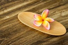 Plumeria on wooden tray Stock Photos