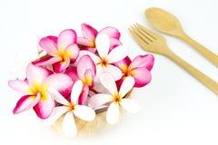 Plumeria y cuchara y frok de madera en el fondo blanco Fotografía de archivo libre de regalías