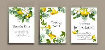 Plumeria and yellow bell flower on card. Vector illustration Stock Images
