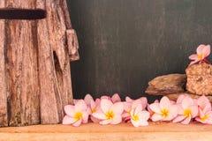 Plumeria z drewnianym wiatraczka i chalkboard tłem Fotografia Royalty Free