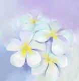 Plumeriaolieverfschilderij Wit bloemenolieverfschilderij royalty-vrije illustratie