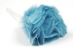 Plumero de la pluma Fotografía de archivo libre de regalías
