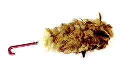 Plumero de la pluma del gallo Imagen de archivo libre de regalías