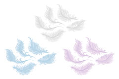 Plumes. On a white background stock illustration