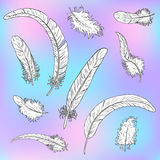 Plumes blanches réglées une découpe noire illustration stock
