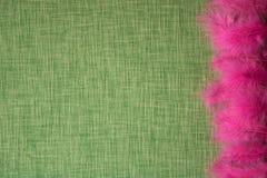 Plumes d'oiseau colorées sur un fond de tissu Images libres de droits