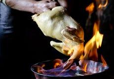 Plumes de poulet Photographie stock libre de droits