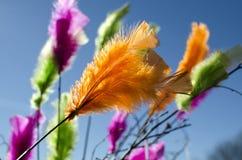 Plumes multicolores nombreuses Images libres de droits