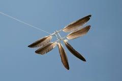 Plummy vlieger Stock Afbeeldingen