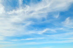 Plumose clouds Stock Photography