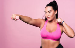 Plump concentrated woman doing sport exercises Royalty Free Stock Photos