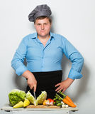 Plump cook on gray wall Stock Photography