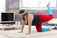 Plump female exercising at home Stock Image