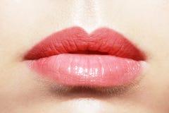 Plump lips Stock Image