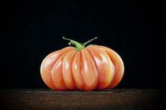 Plump red tomato Royalty Free Stock Photography