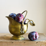 Plumps в шаре сбора винограда Стоковое Фото