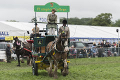 Plumpton College show horse and cart Stock Photo