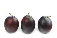Free Plums Royalty Free Stock Photos - 10835838