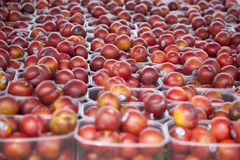 Plums. Nice Juicy Plums in the farmers market Royalty Free Stock Images
