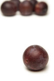 Plums. A few plums on a white background Royalty Free Stock Photo