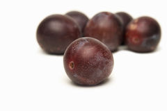 Plums. A few plums on a white background stock photography