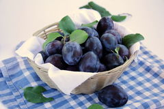 Plums. A lot of plums in a basket with a napkin on a white background Royalty Free Stock Photography