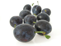 Free Plums Royalty Free Stock Photo - 18288265
