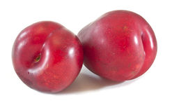 Free Plums Royalty Free Stock Photography - 20044257