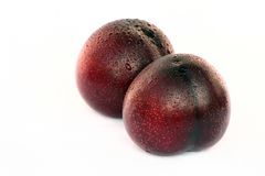 Free Plums Stock Image - 2192701