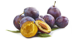 Free Plums Royalty Free Stock Photo - 23653415