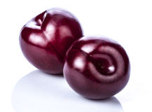 Plums. Fresh plums over white background stock photography