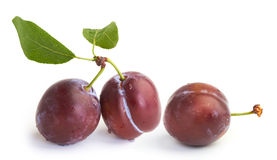 Plums. With green leaves on white stock images