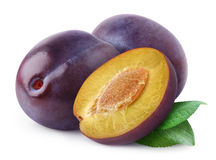 Free Plums Stock Images - 26516284