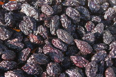 Dried and smoked plums  Royalty Free Stock Photography