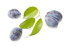 Plums. Some plums with green leaves on white Royalty Free Stock Photo