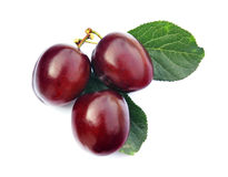 Plums 5 Royalty Free Stock Photos