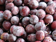 Plums. Some plums as a background Royalty Free Stock Photos