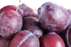 Plums. Stock Photos