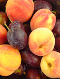 Plums And Peaches Royalty Free Stock Images
