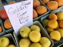 Plums anyone?. Orange and yellow plum for sale at marketsquare in Kingston Ontario stock photo