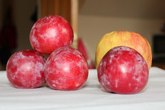 Plums and an apple composition Royalty Free Stock Image