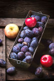 Plums and apples Royalty Free Stock Images
