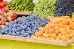 Plums, apricots, apples, grapes in market Stock Images