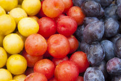 Plums Background Royalty Free Stock Images