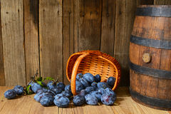 Plums and a barrel of brandy Royalty Free Stock Images