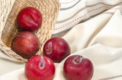 Plums with basket Royalty Free Stock Image