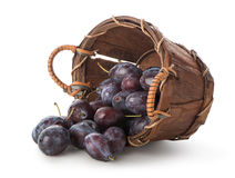 Plums in a basket Royalty Free Stock Photography