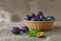 Plums in the basket and mint leaves Royalty Free Stock Image