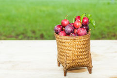 Plums in the basket Stock Photos