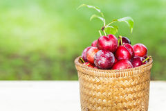 Plums in the basket Royalty Free Stock Photo